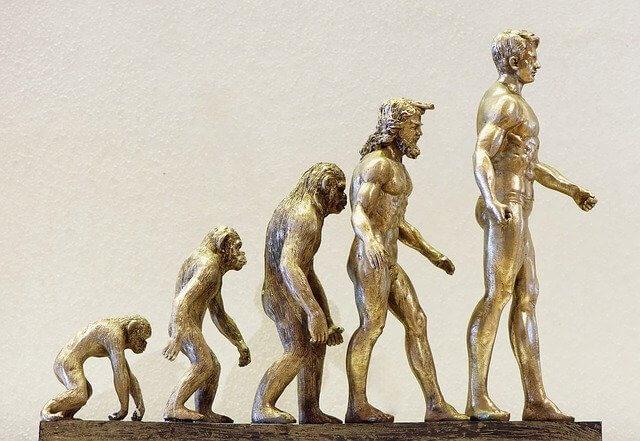 猿が人間に進化する様子