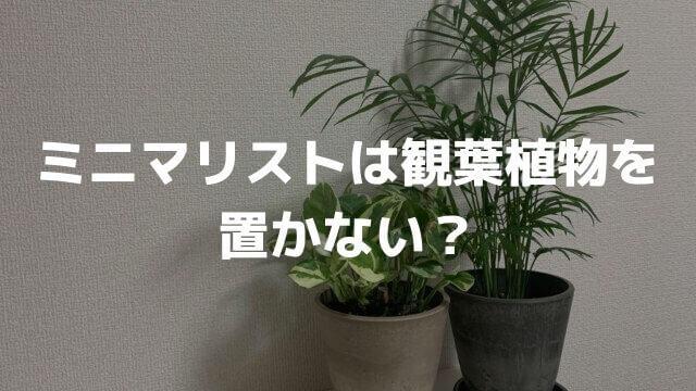 ミニマリストは観葉植物を置かない?