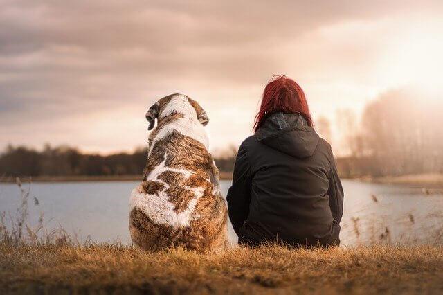 並んでいる女性と犬